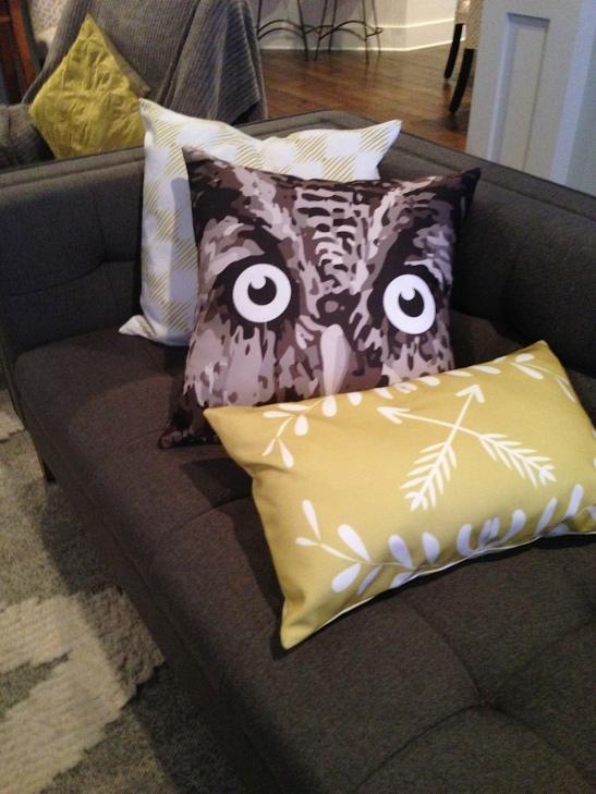 OWL_5819