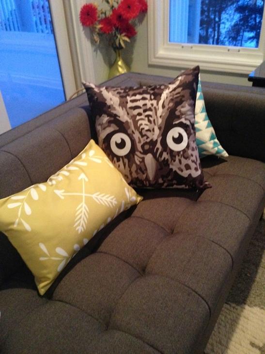 OWL_5820
